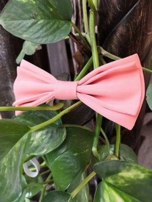 школьная бабочка розалия